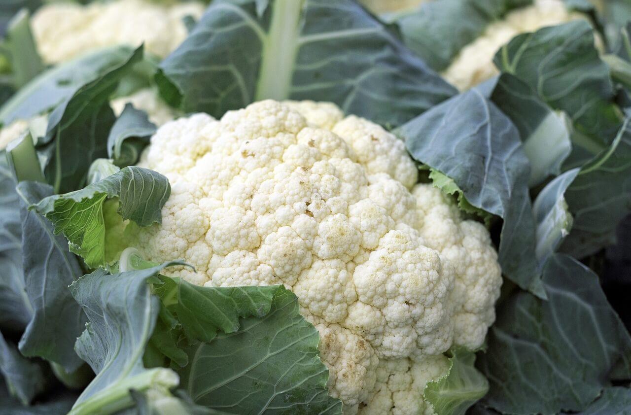 Vegetables to Eat on a Keto Diet: Cauliflower