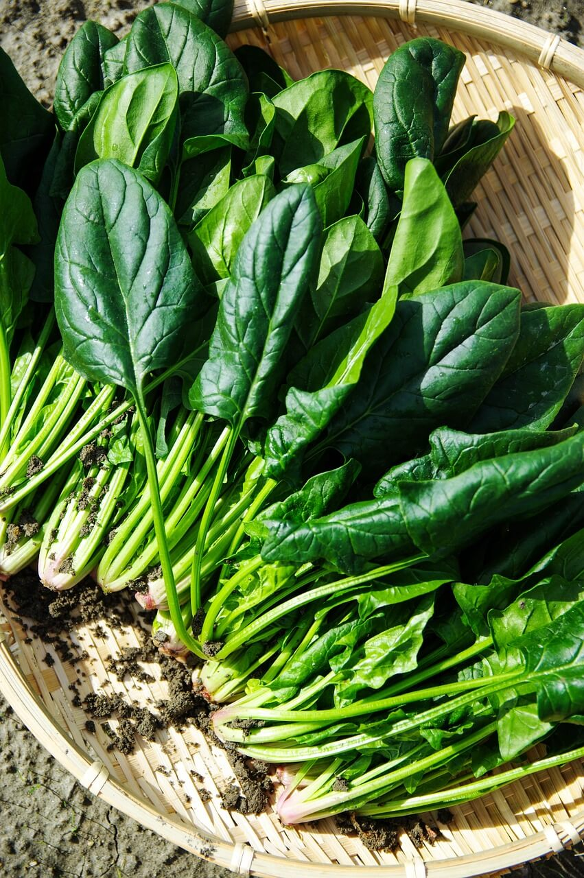 Vegetables to Eat on a Keto Diet: Spinach
