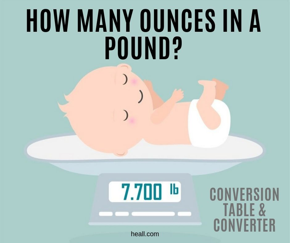 How Many Ounces In A Pound Conversion