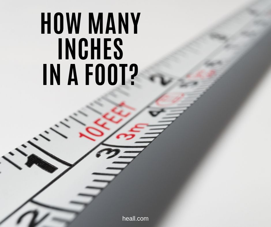 How Many Inches in a Foot?